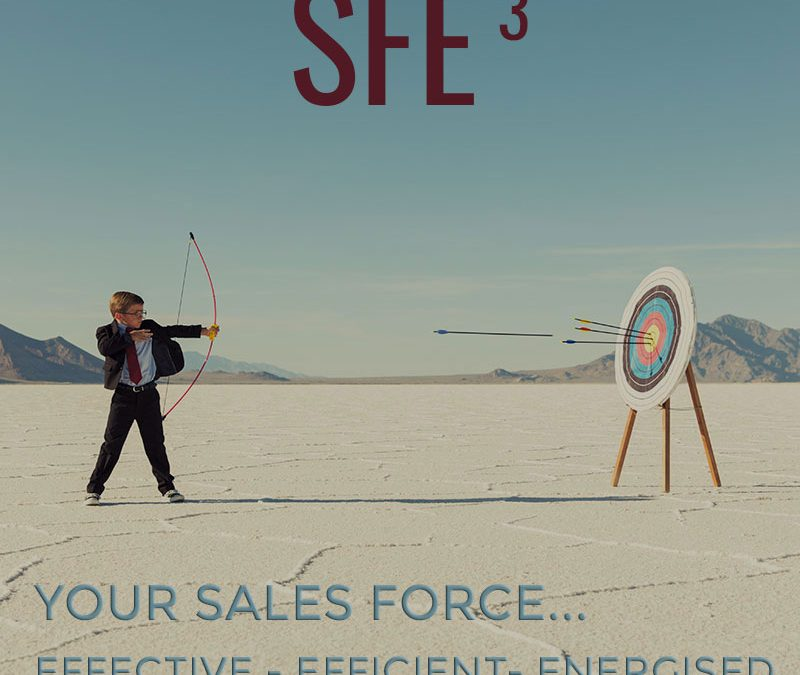 SALES FORCE EFFECTIVENESS (SFE3)